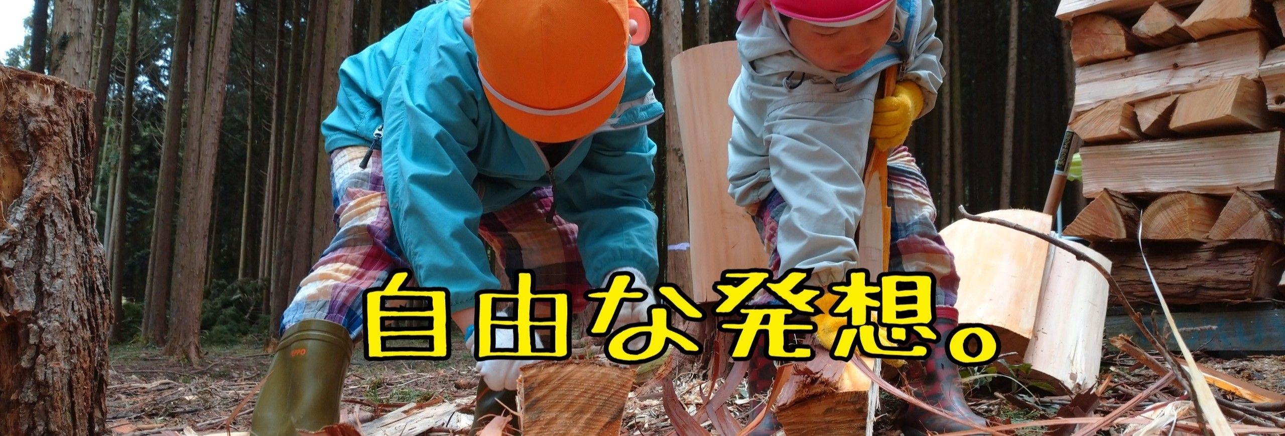 兵庫県丹波市/子どもの遊び場/        まきんこの森/遊森-yushin-